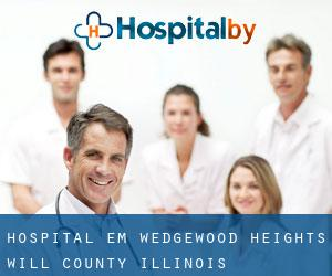 Hospital em Wedgewood Heights (Will County, Illinois)