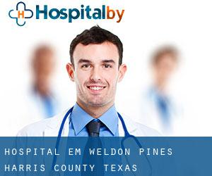 hospital em Weldon Pines (Harris County, Texas)